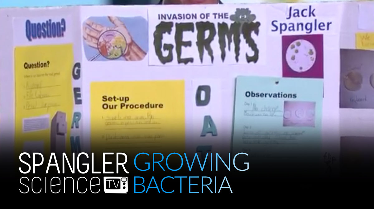 9News Growing Bacteria with Steve Spangler